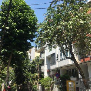 thuê nhà Trung Sơn