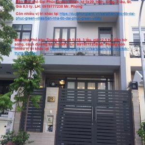 nhà 19 đường 4a Khu Đại Phúc Green villas (1)